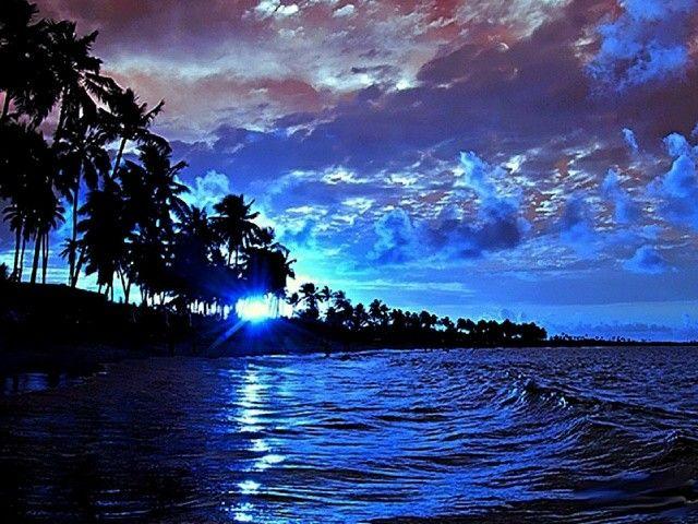 Inserare tropicala