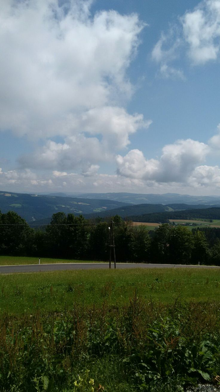 Aussicht von der Sommerrodelbahn St.Corona Österreich