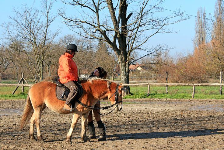 Weboldal: www.tobanjaro.hu Facebook: https://www.facebook.com/pages/Tóbanjáró-Lovasudvar/392940724145376 Lovas képzések: https://www.facebook.com/lovaskepzesek