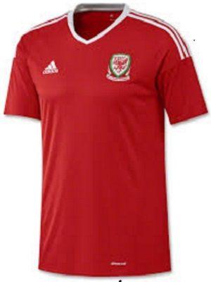 2016 UEFA Euro Wales Soccer Jersey