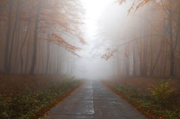 """Mój sposób na """"uczucie"""" straconych dni - Nie lubię kończyć produktywnego dnia i mieć uczucie, że to był dzień stracony. Dlatego też znalazłem sposób który działa na mnie. Oto i on.  https://blog.gutek.pl/2017/04/08/moj-sposob-na-uczucie-straconych-dni"""