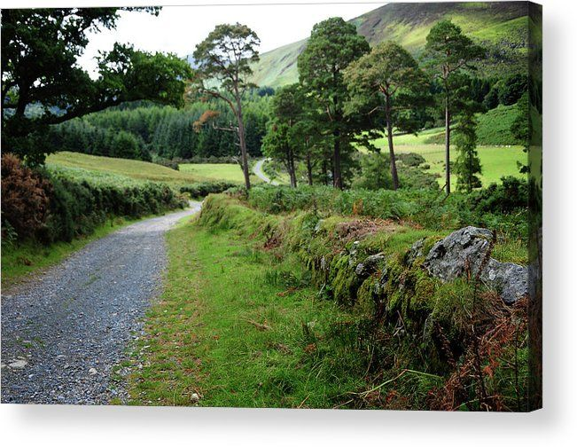 By The Rural Road In Wicklow Hills Acrylic Print by Jenny Rainbow.  All acrylic prints are professionally printed, packaged, and shipped within 3 - 4 business days and delivered ready-to-hang on your wall. Choose from multiple sizes and mounting options.