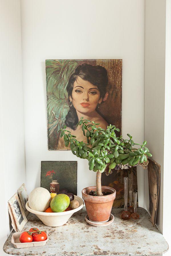 17 Best Images About Crassula Ovata On Pinterest Jade