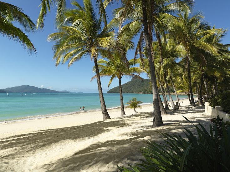 Catseye Beach on Hamilton Island - Hamilton Island (Queensland) - Wikipedia, the free encyclopedia