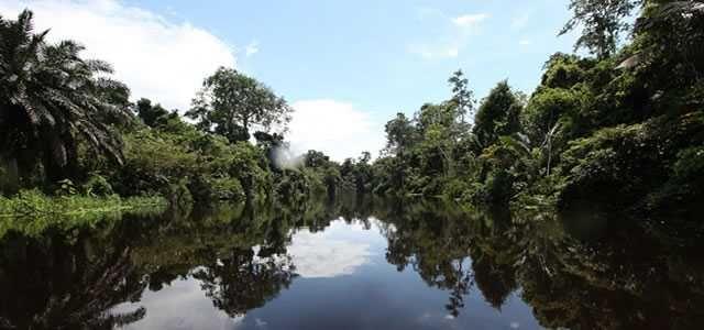 O novo Código Florestal e a Política de Regularização Ambiental no Estado do Acre
