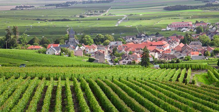 Burgundy France - Google Search