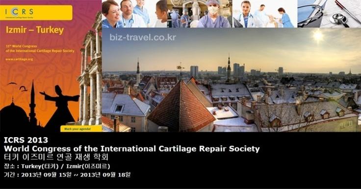 ICRS 2013 World Congress of the International Cartilage Repair Society 터키 이즈미르 연골 재생 학회