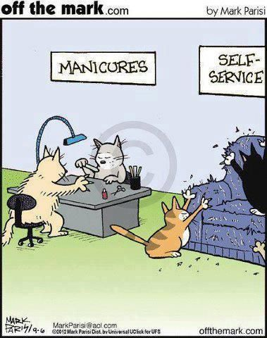 """Just a giggle for the day! From """"off the mark.com"""" by Mark Parisi"""