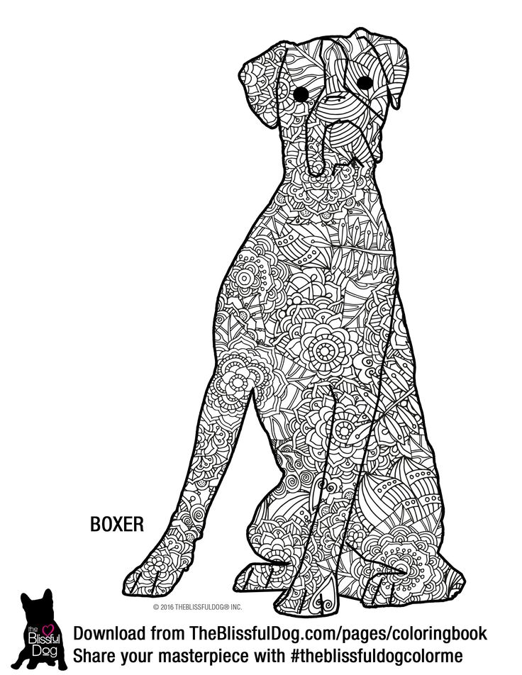 449 best images about coloring adult mandala on for Printable boxer dog coloring pages