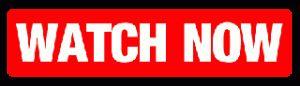 AIB GAA Hurling Kilmallock vs Ballyhale Shamrocks Live, GAA Hurling All Ireland Senior Club Championship Final 2015 Live Stream. Watch AIB GAA Hurling All I
