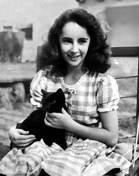 Elizabeth Taylor and a cat.
