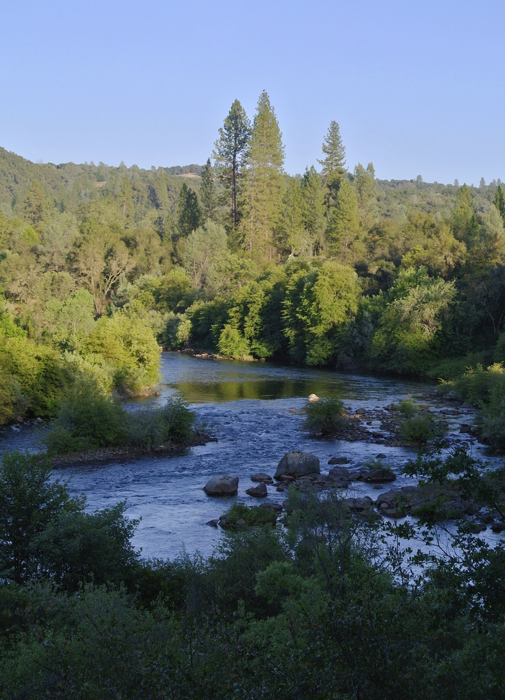 52 best images about fly fishing in california on for American river fishing