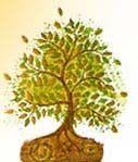 Giorni del fiore, del frutto, della foglia e della radice