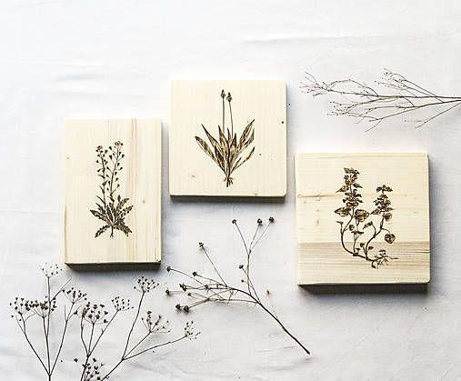 DIY handmade ChopperArt natural herbs ChopperArt / Trojica výnimočných: obrazy liečivky  Drevené obrazy na stenu s vypaľovaným motívom