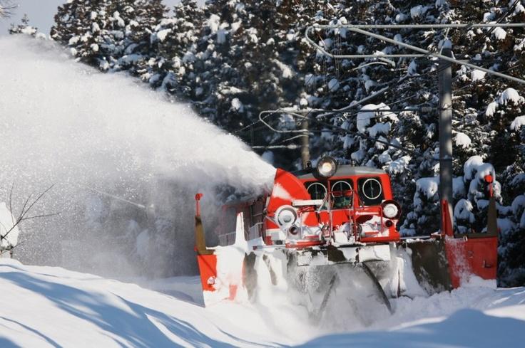 DD14 snowplow