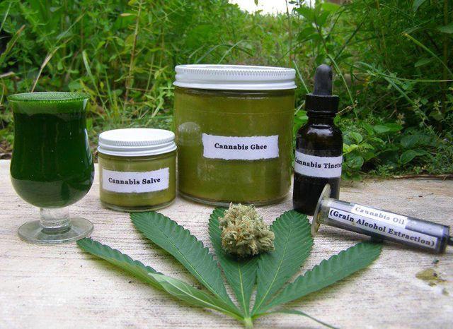 Hanf, aus dem u.a. Cannabis gewonnen wird, gehört nicht nur zu den ältesten Kulturpflanzen der Menschheit, sondern auch zu den medizinisch wirksamsten. Cannabisöl soll Krebs heilen, doch für die He…