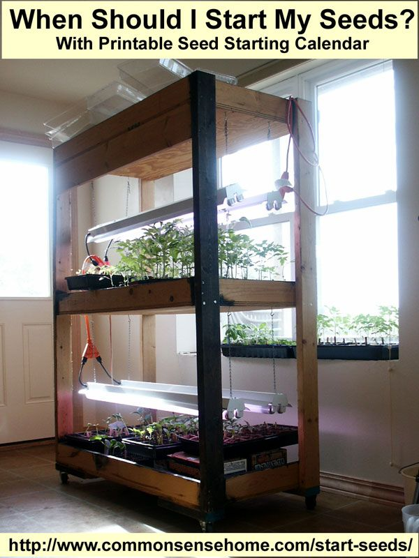 1000 Ideas About Seed Starting On Pinterest Grow Lights For Plants Grow Lights And Tomato Garden