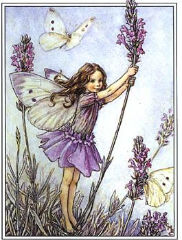 Lavender Flower fairy by Cicely Mary Barker - Wood mounted rubber-stamp from Stamps Happen Inc