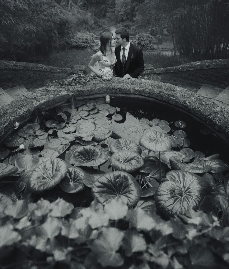 Botanical Gardens of Hanbury, Photographed by Michael Greenberg phototerra.com
