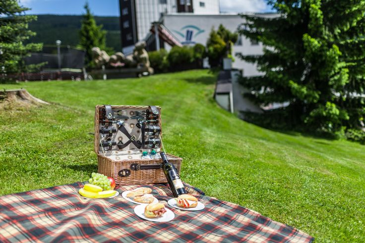 Piknik u hotelu Horizont
