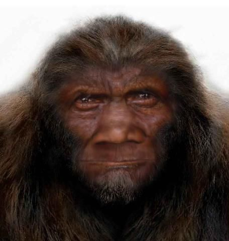 Bigfoot News March 15, 2013 | Beyond Highbrow - Robert Lindsay