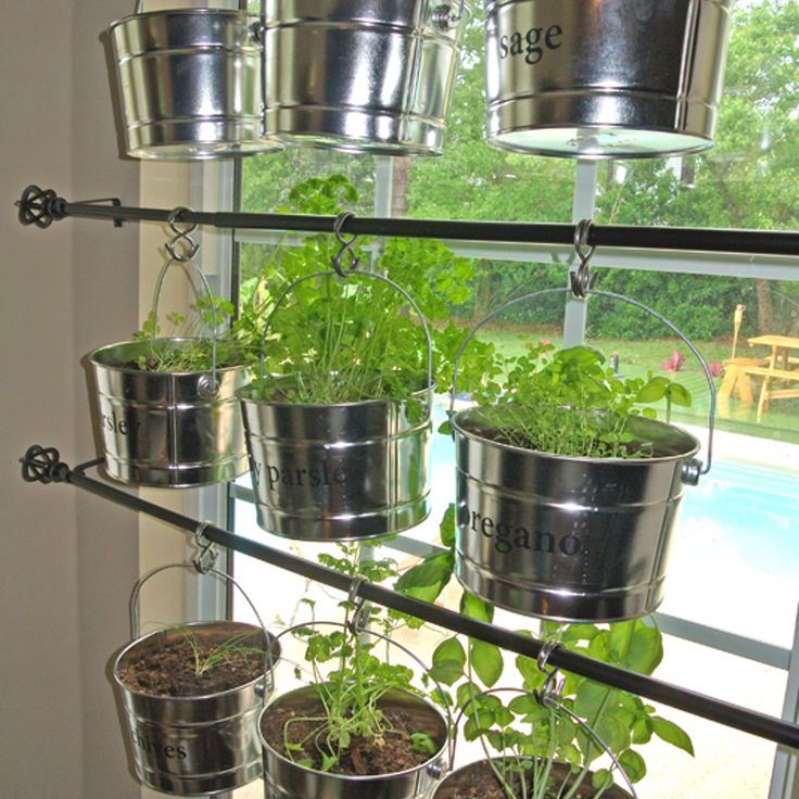Hanging Kitchen Herb Garden Gardens Herbs Garden And