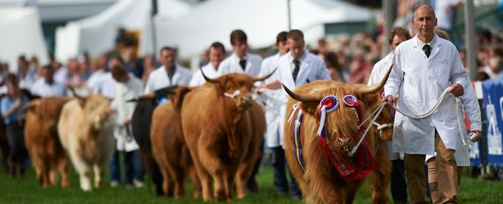 The Royal Norfolk Show | Royal Norfolk Show