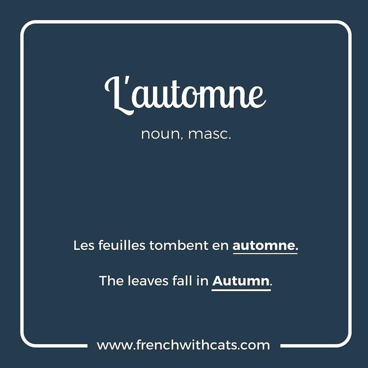 #learnfrench in a fun way with our #french #wordoftheday . Today's word= l'automne=autumn or Fall. One of our favourite seasons!