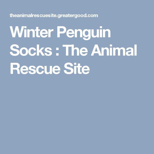 Winter Penguin Socks : The Animal Rescue Site