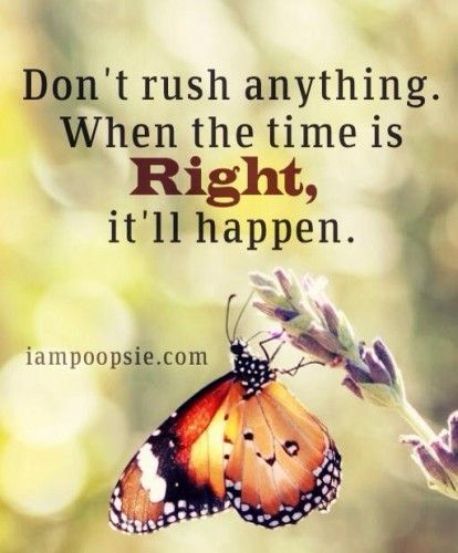 When The Right Time Comes Quotes: Don't Rush On Anything. When The Time Is Right, It Will