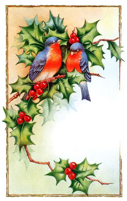 Christmas Birds :: Image 5: