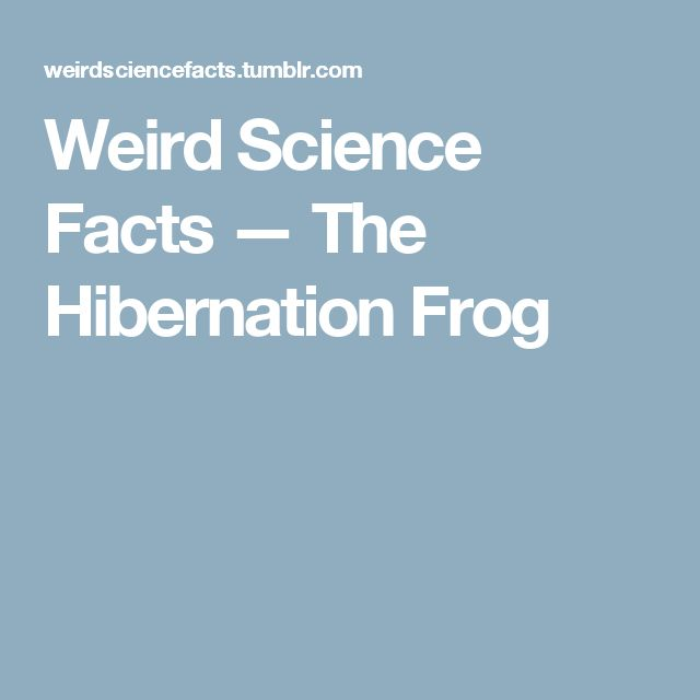 Weird Science Facts — The Hibernation Frog