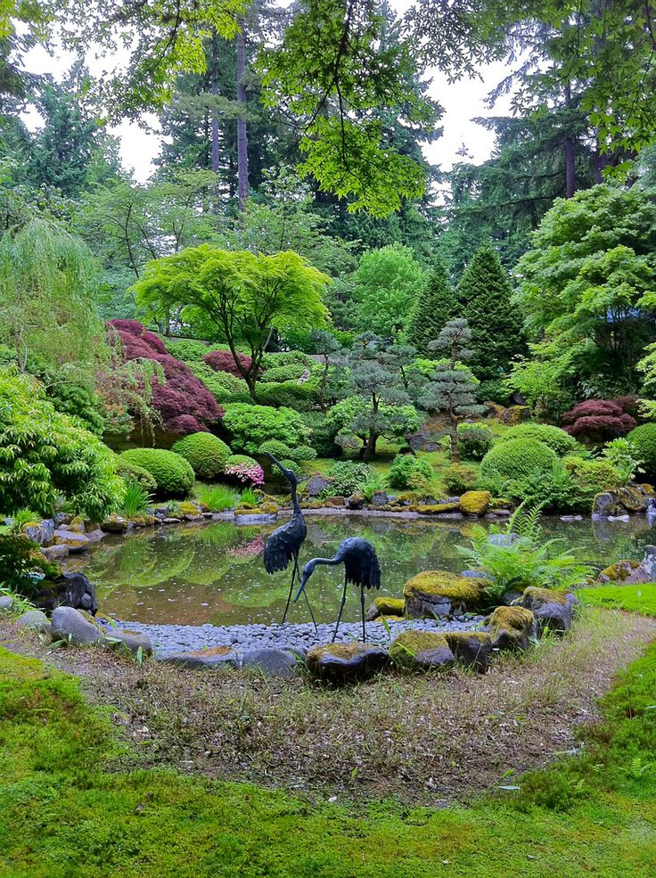 Japanese Garden With Rocks: 451 Best Japanese Garden Pictures And Asian Landscaping