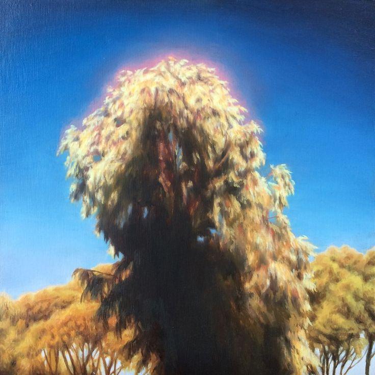 James Bonnici, Hansen Reserve 20 x 20 cm, oil on linen, available
