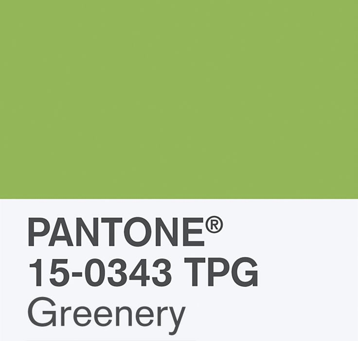 2017 Color Of The Year Is Greenery According To PANTONE