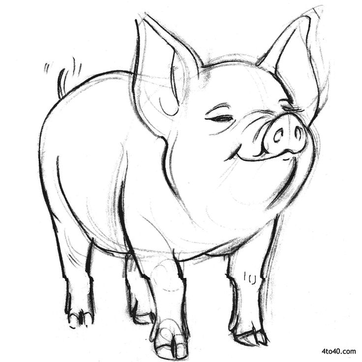 wilbur pig coloring pages | 33 best Coloring Pages - Charlotte's Web images on Pinterest