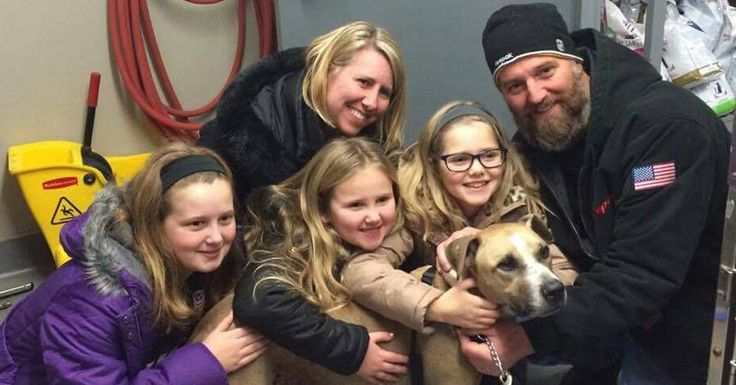 Dog whose near 5-year stay in shelter went viral finds permanent home in Boston - Massachusetts news - Boston.com
