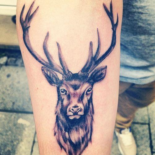 Deer Head Animal Grey Ink Tattoo On Right Arm