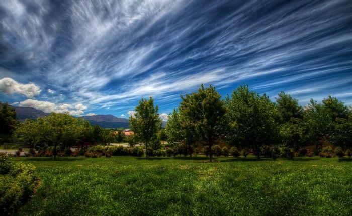 трава, природа, небо, деревья, Пейзаж, зелень, облака