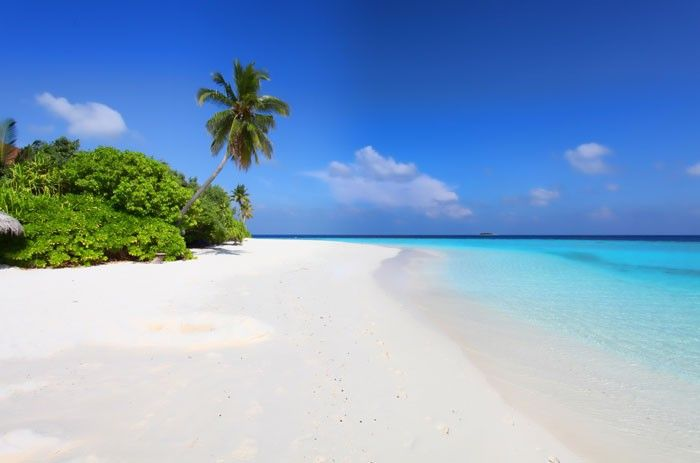Vlies fotobehang Strand Malediven - Strand behang | Muurmode.nl
