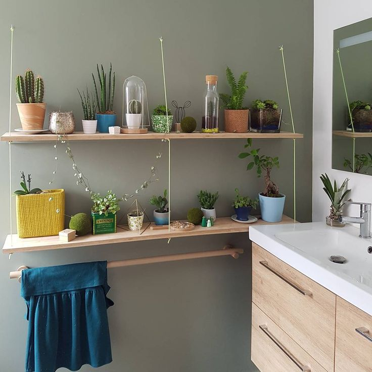 """104 mentions J'aime, 18 commentaires - 1, 2, 3 p'tits pois (@123ptitspois) sur Instagram: """"Je crois que ça y est, chacune à trouvé sa place... #plante #fleur #deco #vegetal #decoration…"""""""