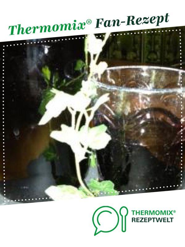 Holundersaft von Kallewirsch. Ein Thermomix ® Rezept aus der