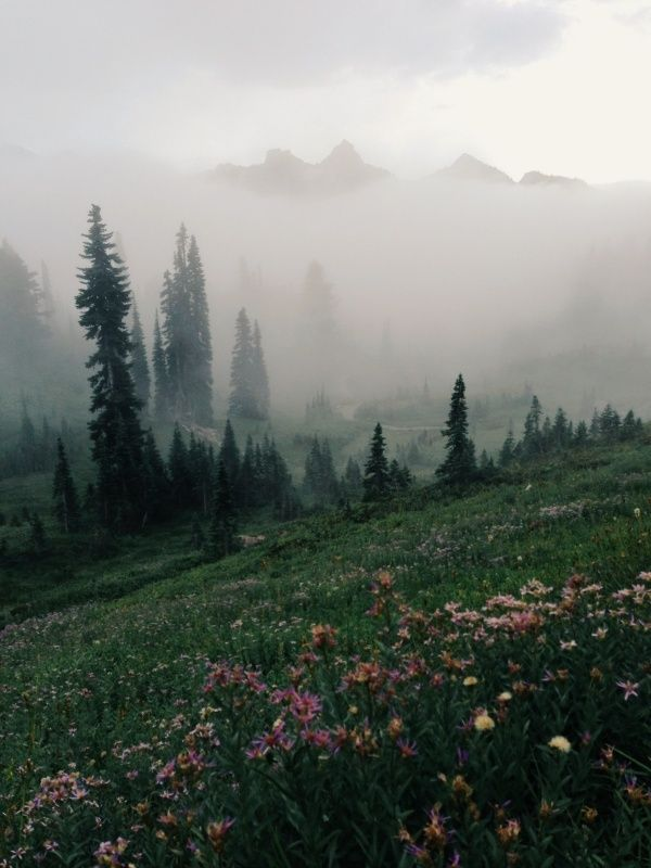 Mount Rainier National Park, Kevin Russ