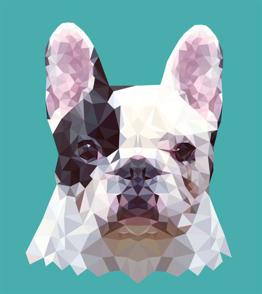 We've seen some wonderful examples in how to create vector art and this latest project from designer Hope Little is a marvel of geometric patterns.