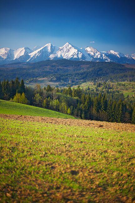 Tatra Mountains - Lapszanka, Malopolskie