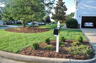 Landscape idea around mailbox