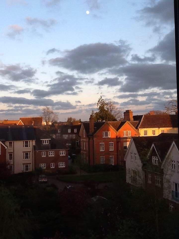 Horsham. West Sussex. England.