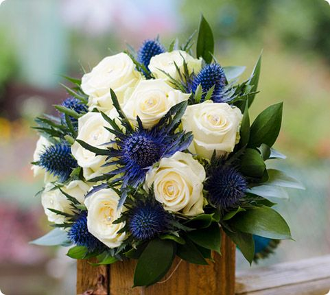 Thistle and white rose bouquet i like the lighter green for White and blue flower bouquet