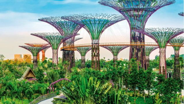 Image Showing Things To Do In Singapore Garden By The Bay Singapore Garden Gardens By The Bay Indoor Waterfall
