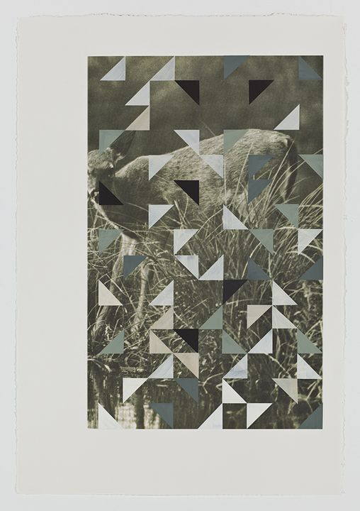 "Kevin Appel, Screen (fawn), Gouache on archival pigment print on watercolor paper, 2009, 40"" x 26"""